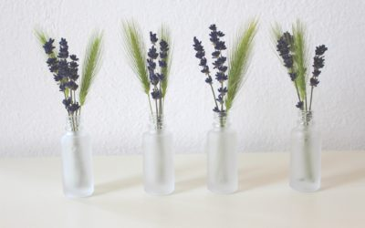 5 Unique Ways Lavender Can Improve Your Daily Life