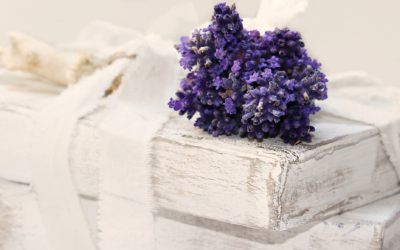 Can Lavender Support Weight Loss Goals of Men & Women?
